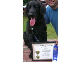 Willie: 1st place in Novice class for disc catch and best form - way to go, pal!