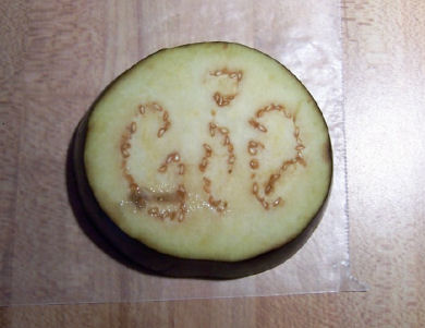 "<div class=""meta ""><span class=""caption-text "">8.12.2007Boothwyn, Delaware County resident Felicia Teske was preparing fried eggplant for dinner on August 12, 2007. Upon slicing the eggplant she noticed that the seeds contained within one slice appeared to spell out the word ""GOD"". Her husband Paul looked at the sliced eggplant and couldn't believe it either, calling Action News. Felicia told Action News that she recently had family members pass away and it is comforting that ""GOD"" appeared.</span></div>"